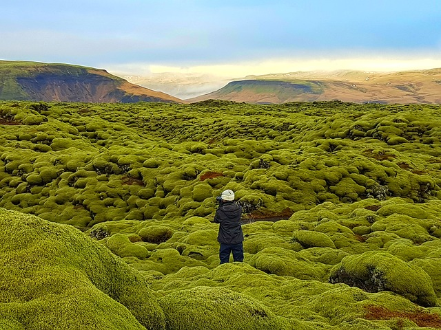 person taking a picture in lava filed in Iceland