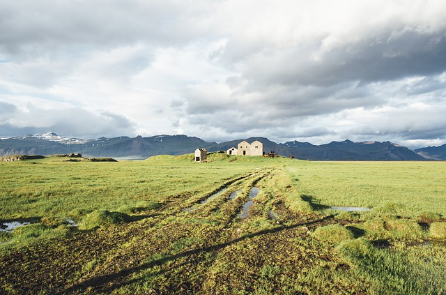 icelandic farmer vikings