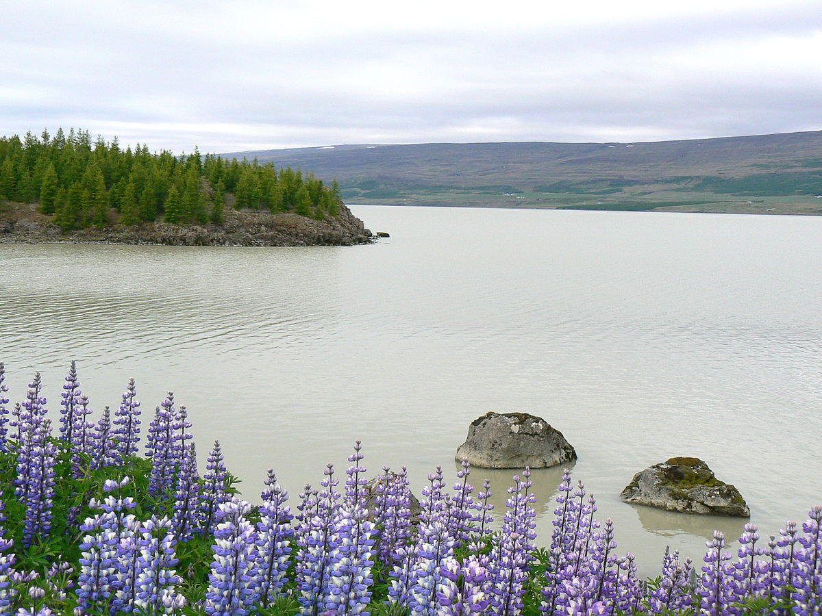 Lagarfljót river