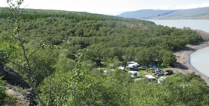 hallormsstaðaskógur forest